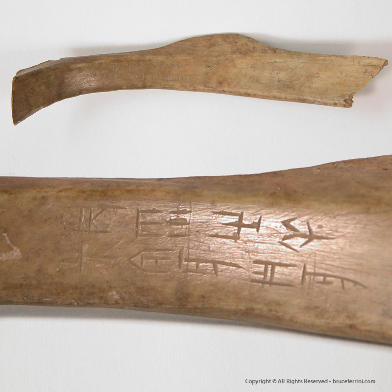 Chinese Oracle Bones - Inscribed Bone Anyang, China - 14th – 12th Century B.C